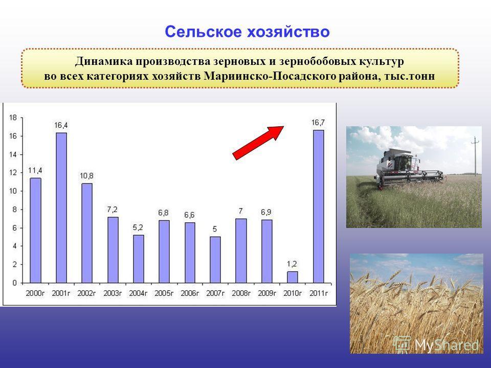 6 Динамика производства зерновых и зернобобовых культур во всех категориях хозяйств Мариинско-Посадского района, тыс.тонн Сельское хозяйство