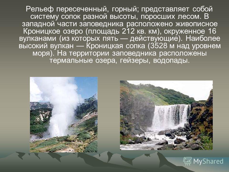 Рельеф пересеченный, горный; представляет собой систему сопок разной высоты, поросших лесом. В западной части заповедника расположено живописное Кроницкое озеро (площадь 212 кв. км), окруженное 16 вулканами (из которых пять действующие). Наиболее выс