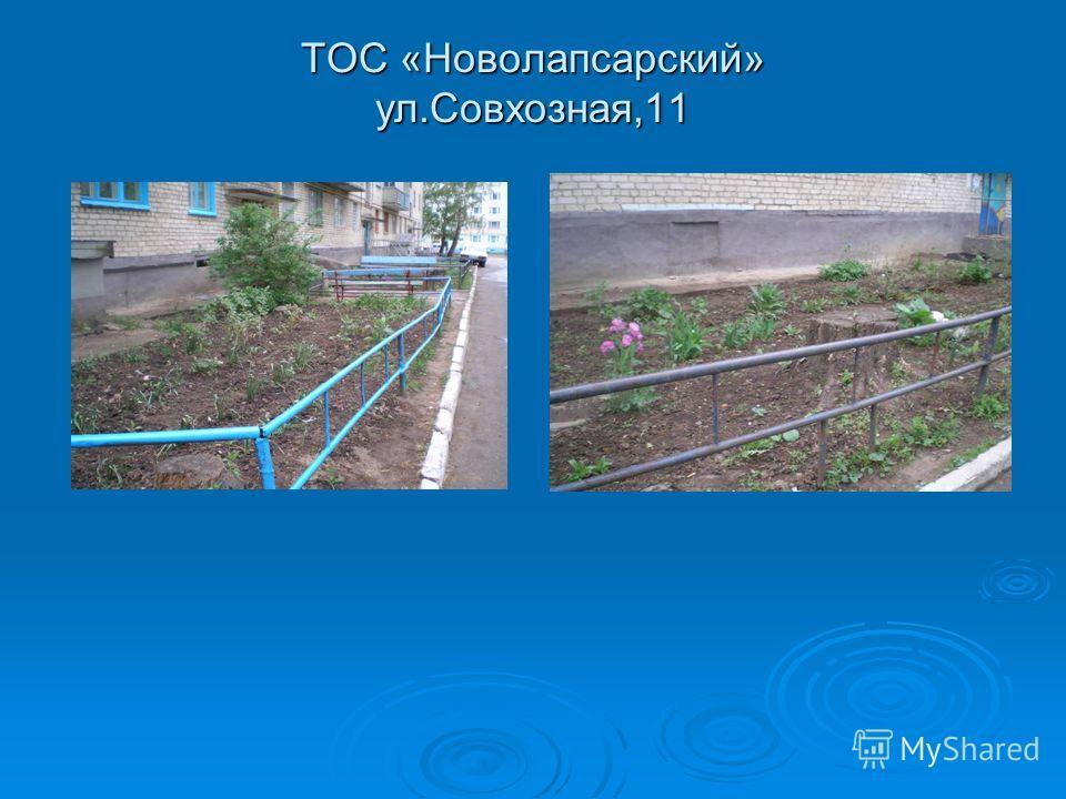 ТОС «Новолапсарский» ул.Совхозная,11