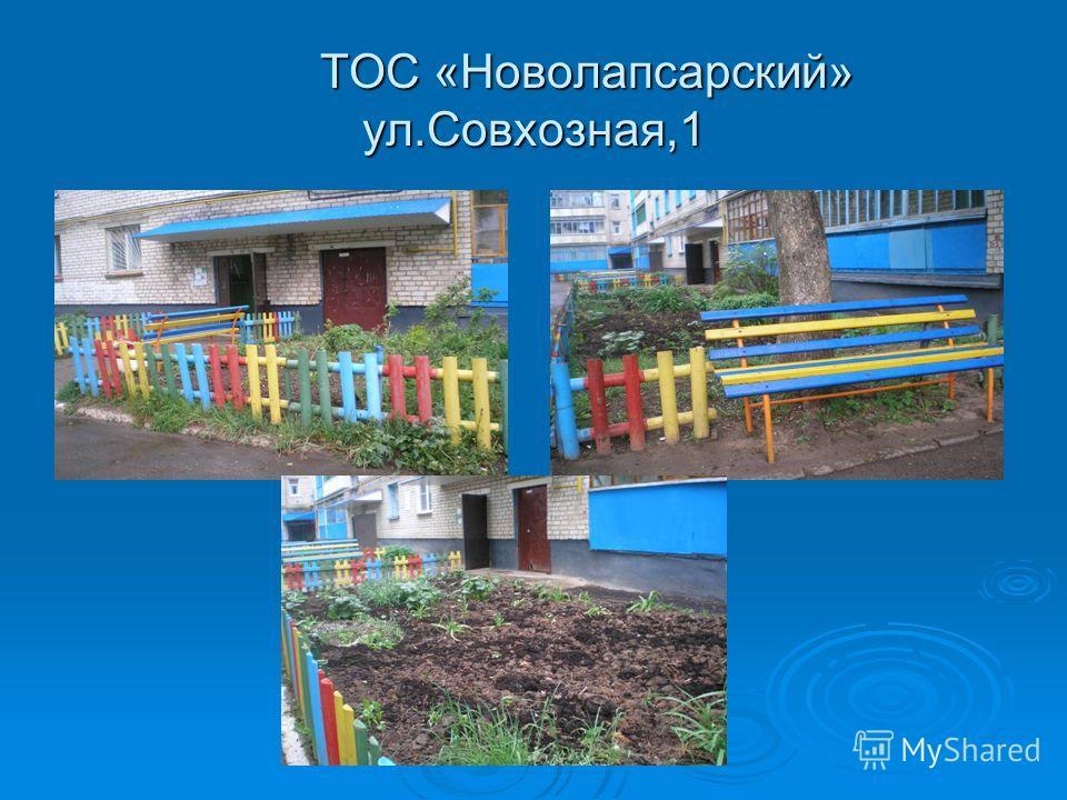 ТОС «Новолапсарский» ул.Совхозная,1