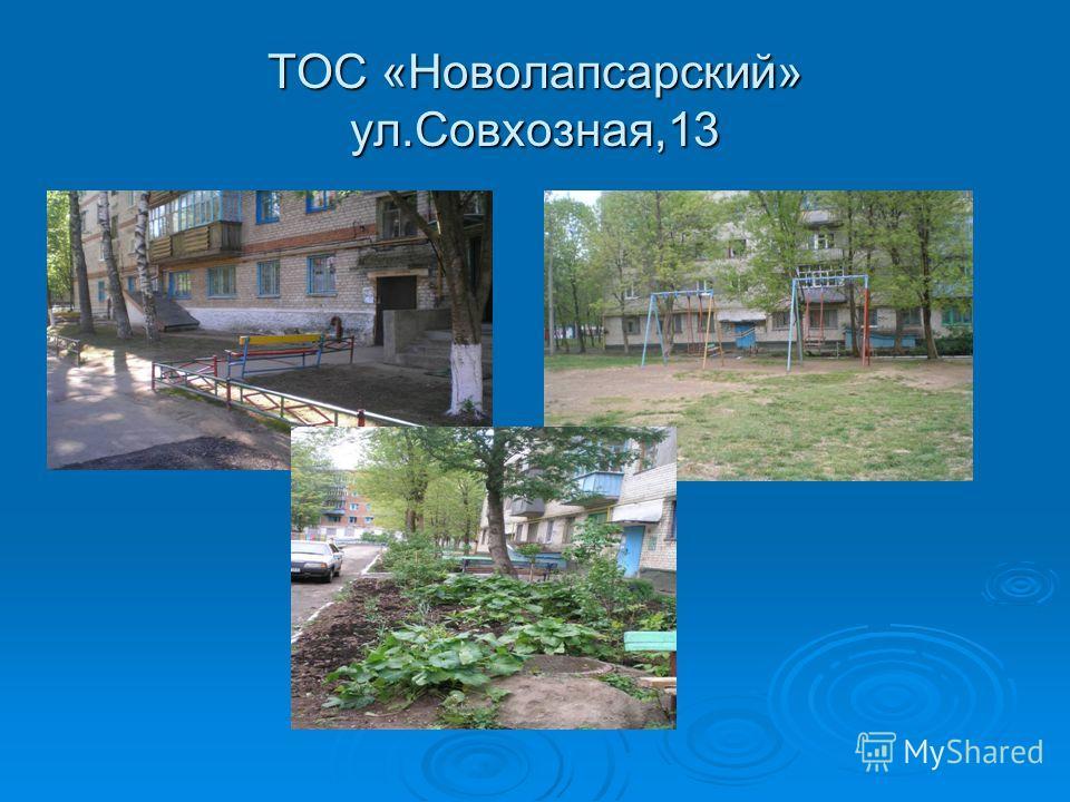 ТОС «Новолапсарский» ул.Совхозная,13