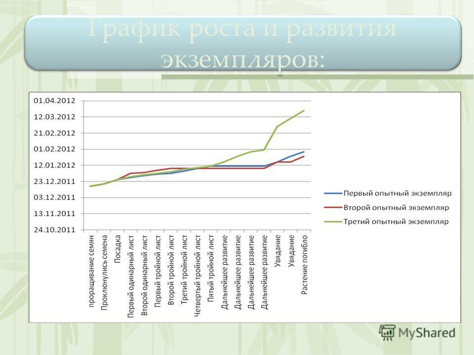 График роста и развития экземпляров: