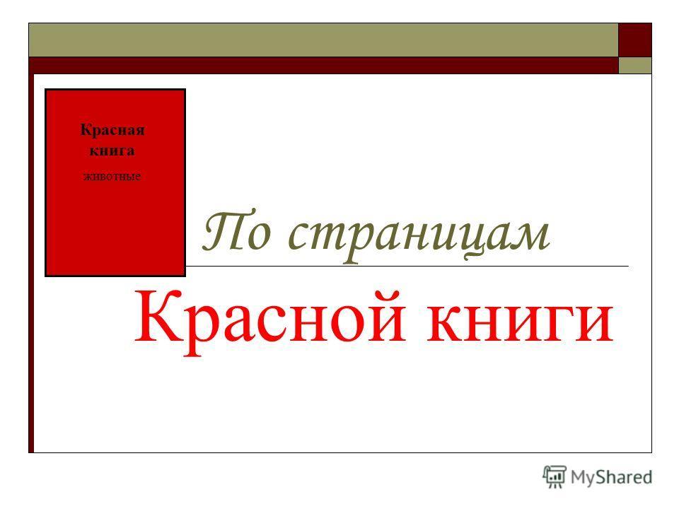 По страницам Красной книги Красная книга животные