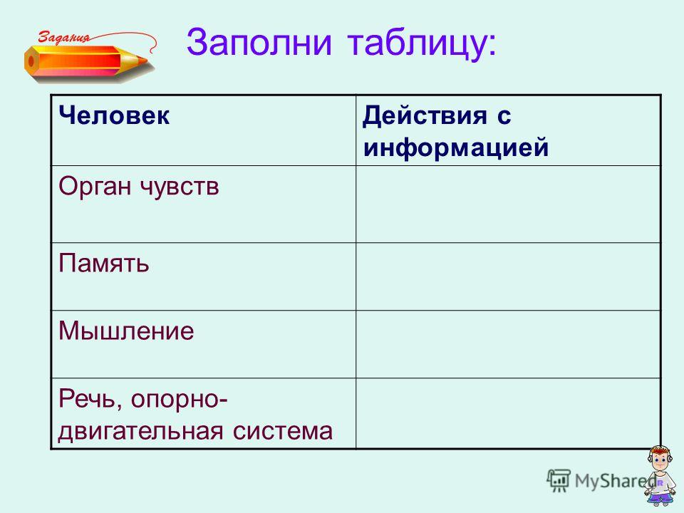 Заполни таблицу: ЧеловекДействия с информацией Орган чувств Память Мышление Речь, опорно- двигательная система