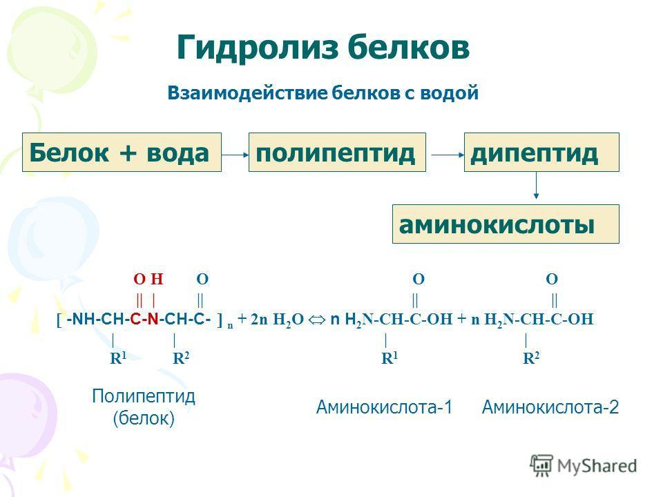 Гидролиз белков O H O O O || | || || || -NH-CH-C-N-CH-C- n + 2n H 2 O n H 2 N-CH-C-OH + n H 2 N-CH-C-OH | | | | R 1 R 2 R 1 R 2 Полипептид ( белок ) Аминокислота -1 Аминокислота -2 Белок + водаполипептиддипептид аминокислоты Взаимодействие белков с в