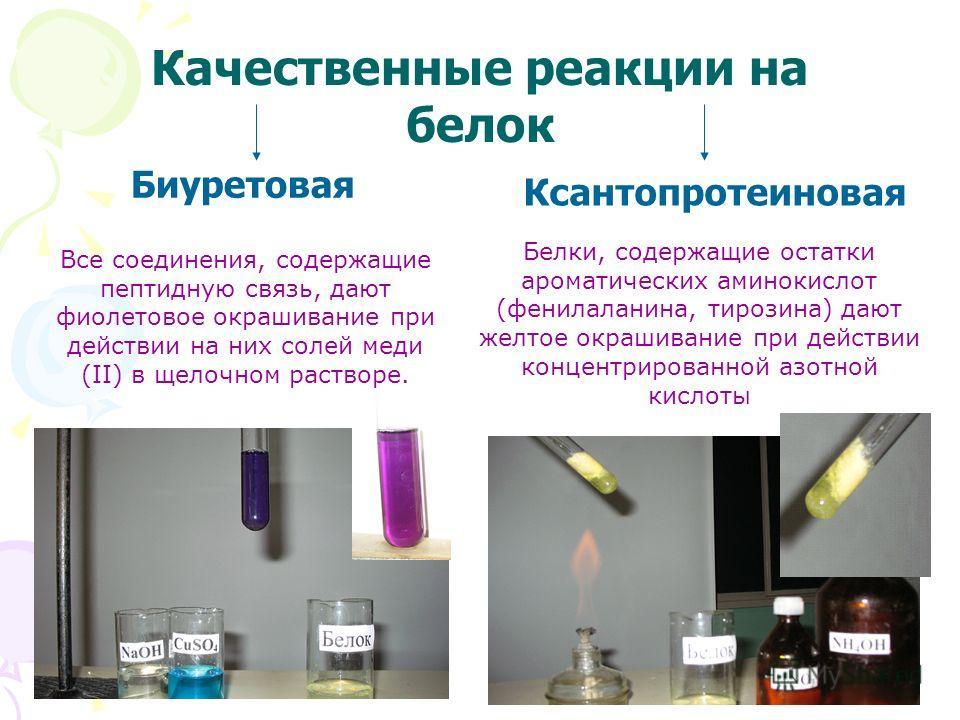 Качественные реакции на белок Биуретовая Ксантопротеиновая Белки, содержащие остатки ароматических аминокислот (фенилаланина, тирозина) дают желтое окрашивание при действии концентрированной азотной кислоты Все соединения, содержащие пептидную связь,