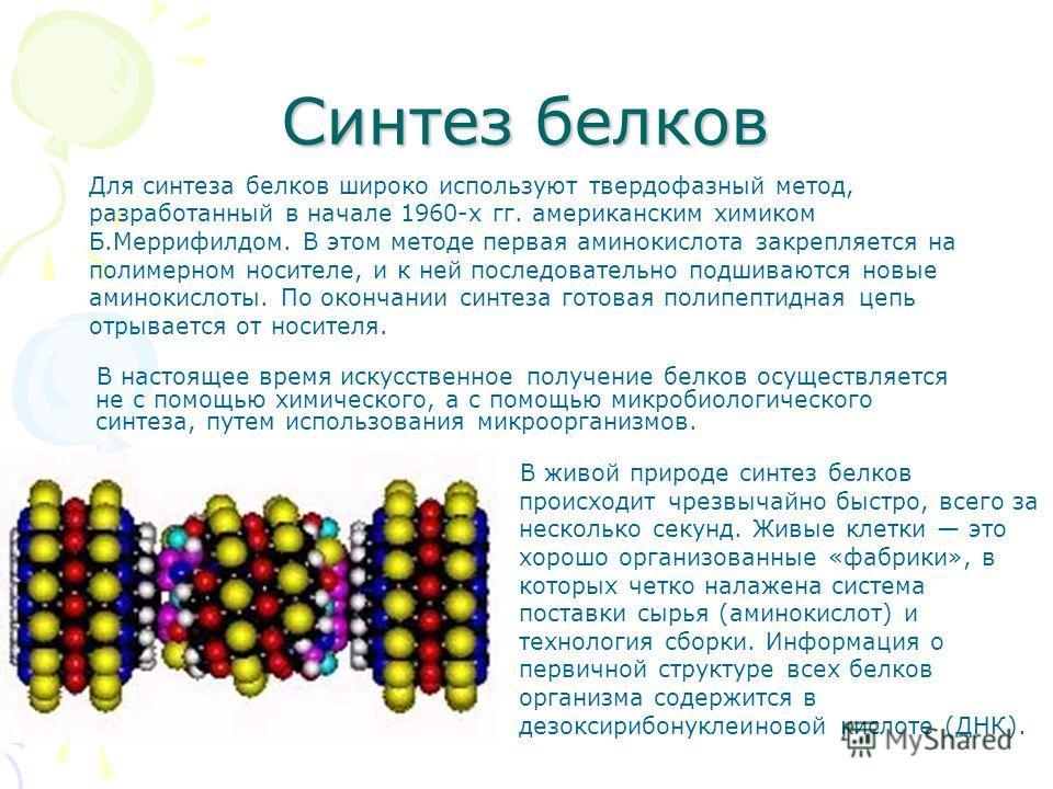 Для синтеза белков широко используют твердофазный метод, разработанный в начале 1960-х гг. американским химиком Б.Меррифилдом. В этом методе первая аминокислота закрепляется на полимерном носителе, и к ней последовательно подшиваются новые аминокисло