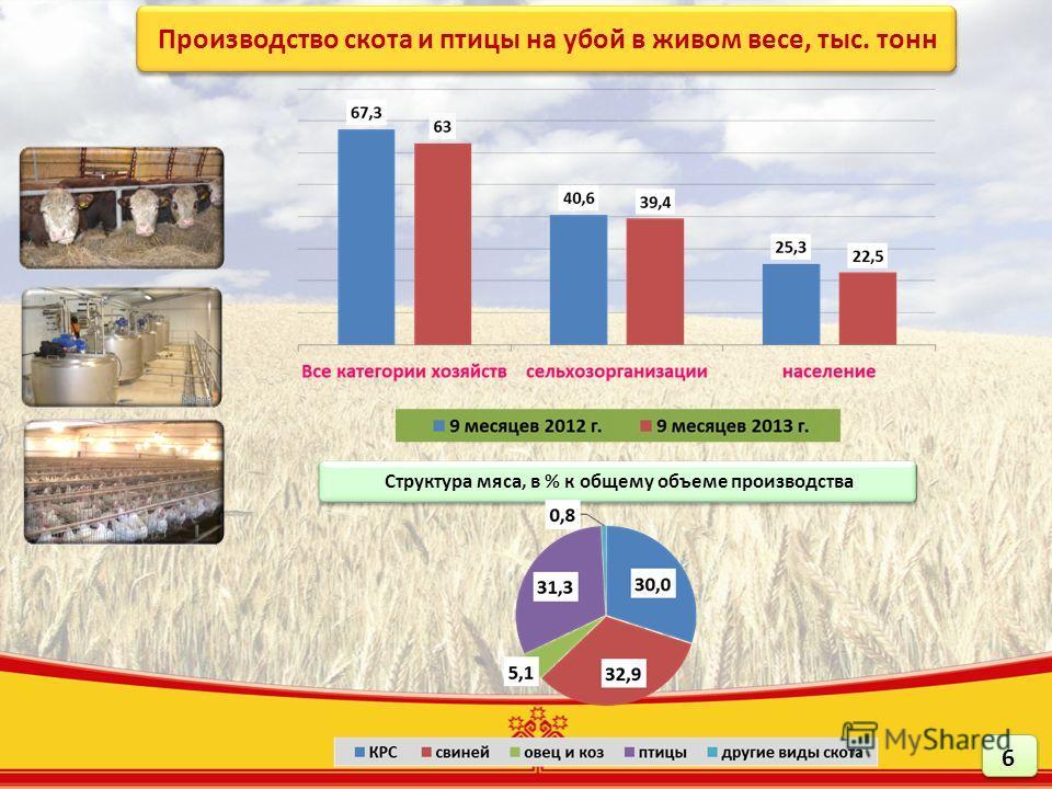 Производство скота и птицы на убой в живом весе, тыс. тонн Структура мяса, в % к общему объеме производства