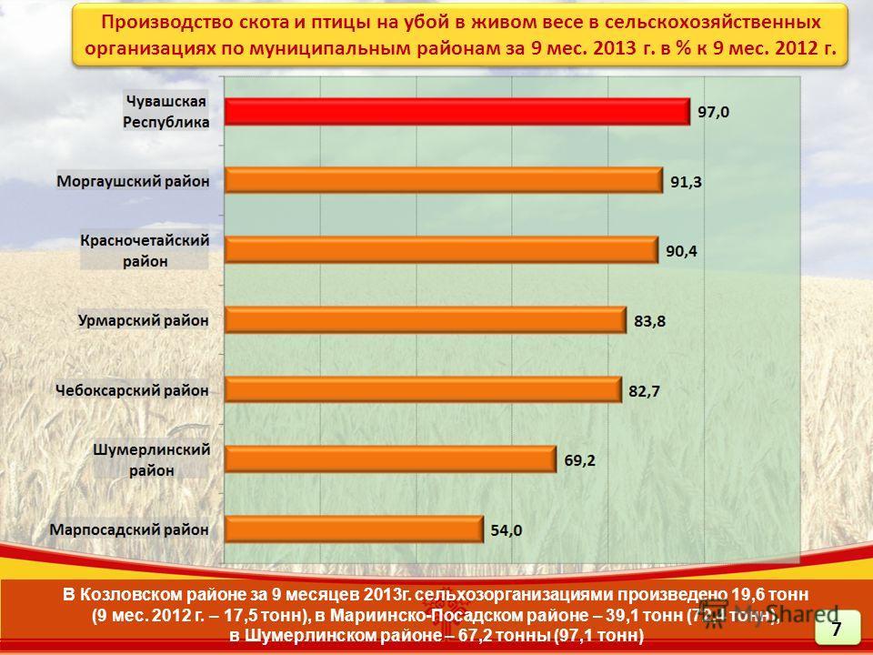 В Козловском районе за 9 месяцев 2013г. сельхозорганизациями произведено 19,6 тонн (9 мес. 2012 г. – 17,5 тонн), в Мариинско-Посадском районе – 39,1 тонн (72,4 тонн), в Шумерлинском районе – 67,2 тонны (97,1 тонн) Производство скота и птицы на убой в