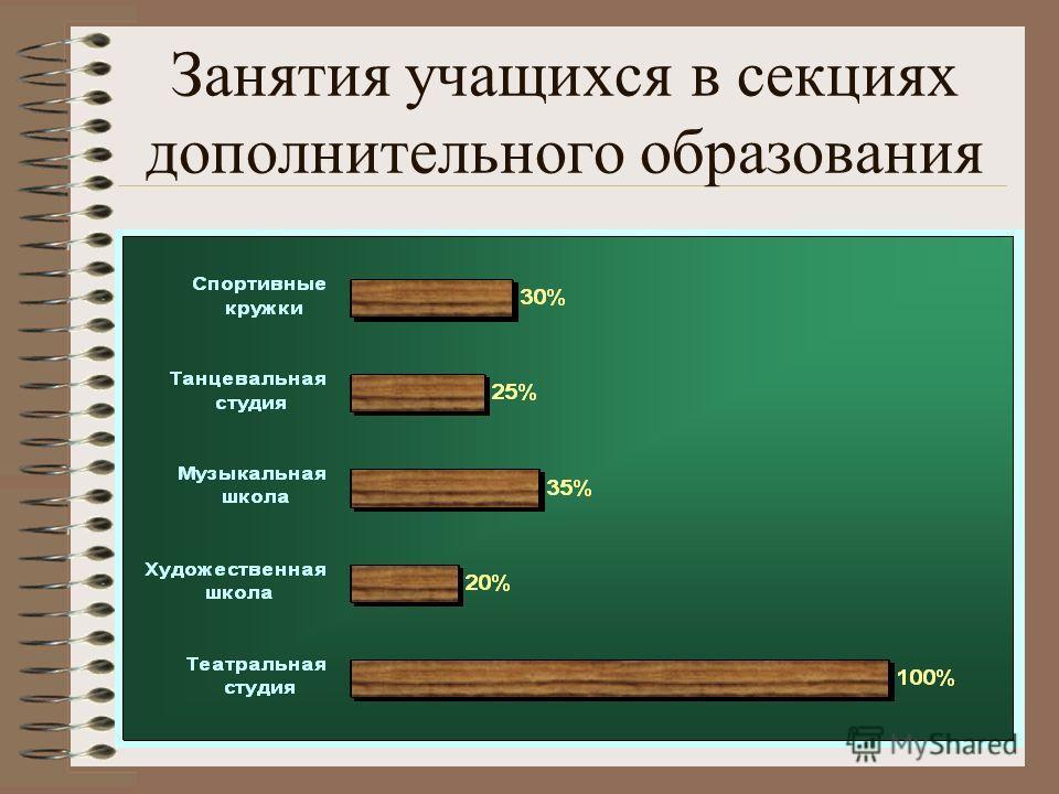 Занятия учащихся в секциях дополнительного образования