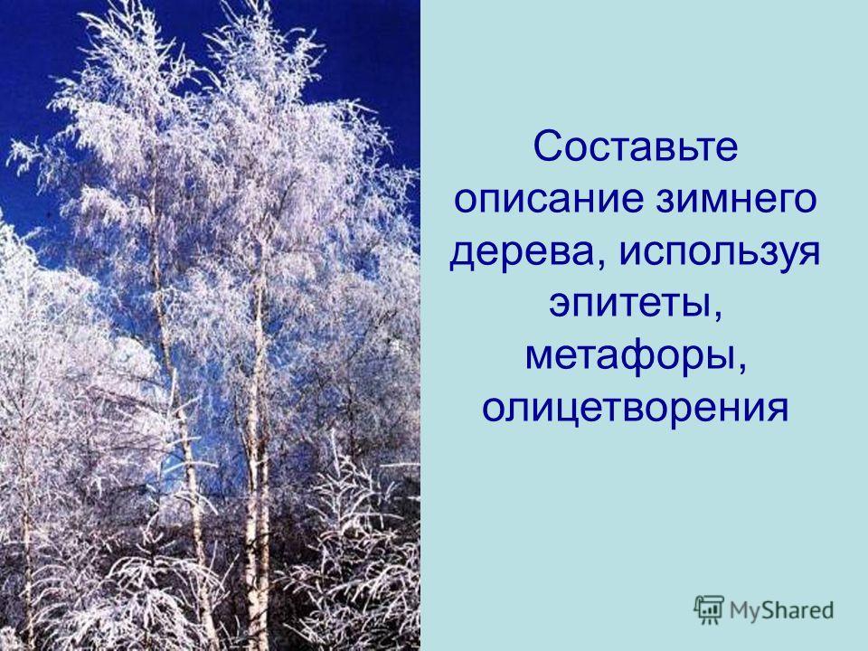 Составьте описание зимнего дерева, используя эпитеты, метафоры, олицетворения