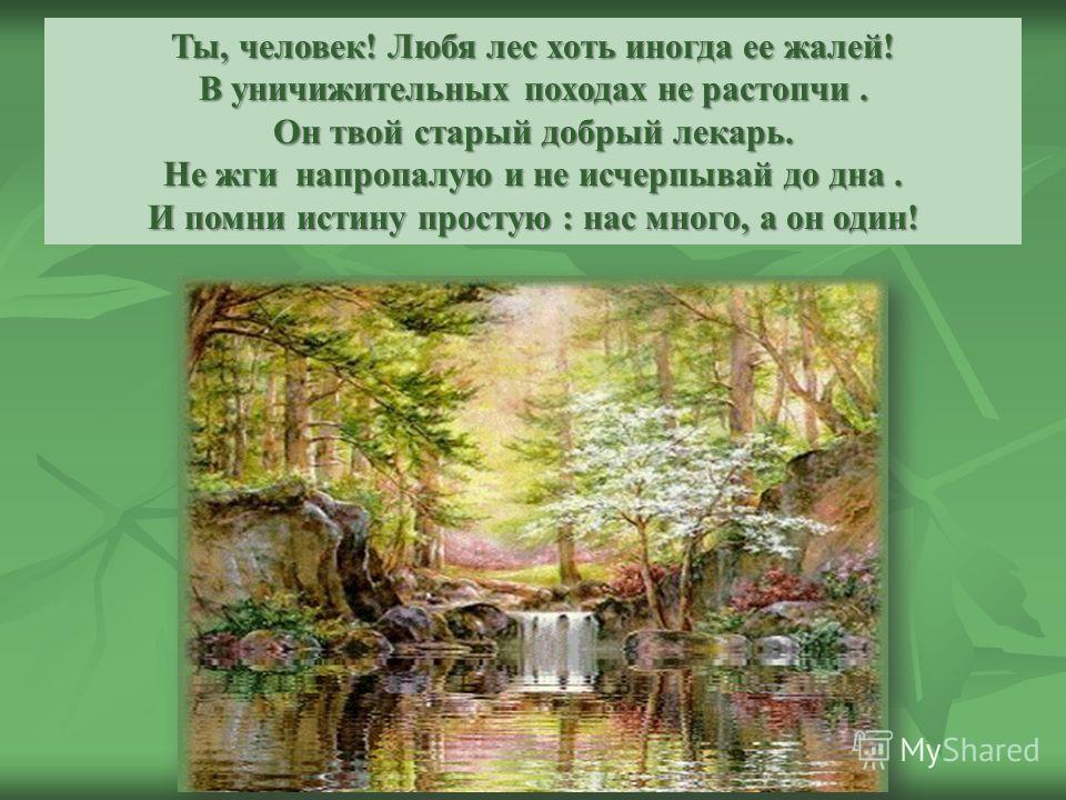 Ты, человек! Любя лес хоть иногда ее жалей! В уничижительных походах не растопчи. Он твой старый добрый лекарь. Не жги напропалую и не исчерпывай до дна. И помни истину простую : нас много, а он один!