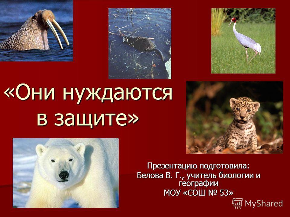 «Они нуждаются в защите» Презентацию подготовила: Белова В. Г., учитель биологии и географии МОУ «СОШ 53»