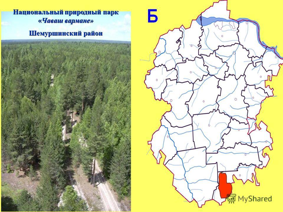 Национальный природный парк «Чаваш вармане» Шемуршинский район