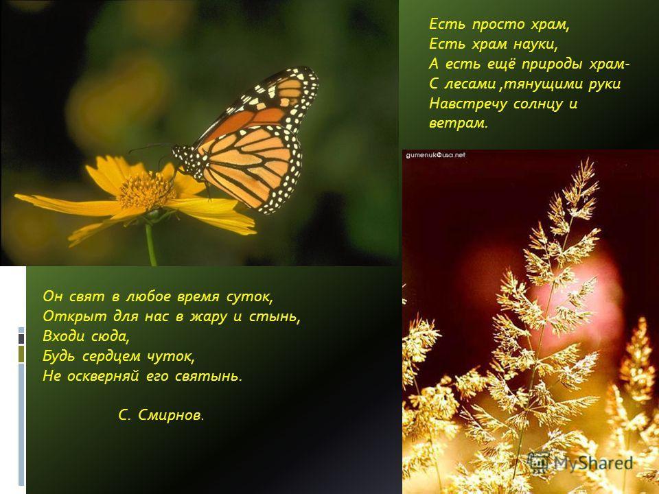 Есть просто храм, Есть храм науки, А есть ещё природы храм- С лесами,тянущими руки Навстречу солнцу и ветрам. Он свят в любое время суток, Открыт для нас в жару и стынь, Входи сюда, Будь сердцем чуток, Не оскверняй его святынь. С. Смирнов.
