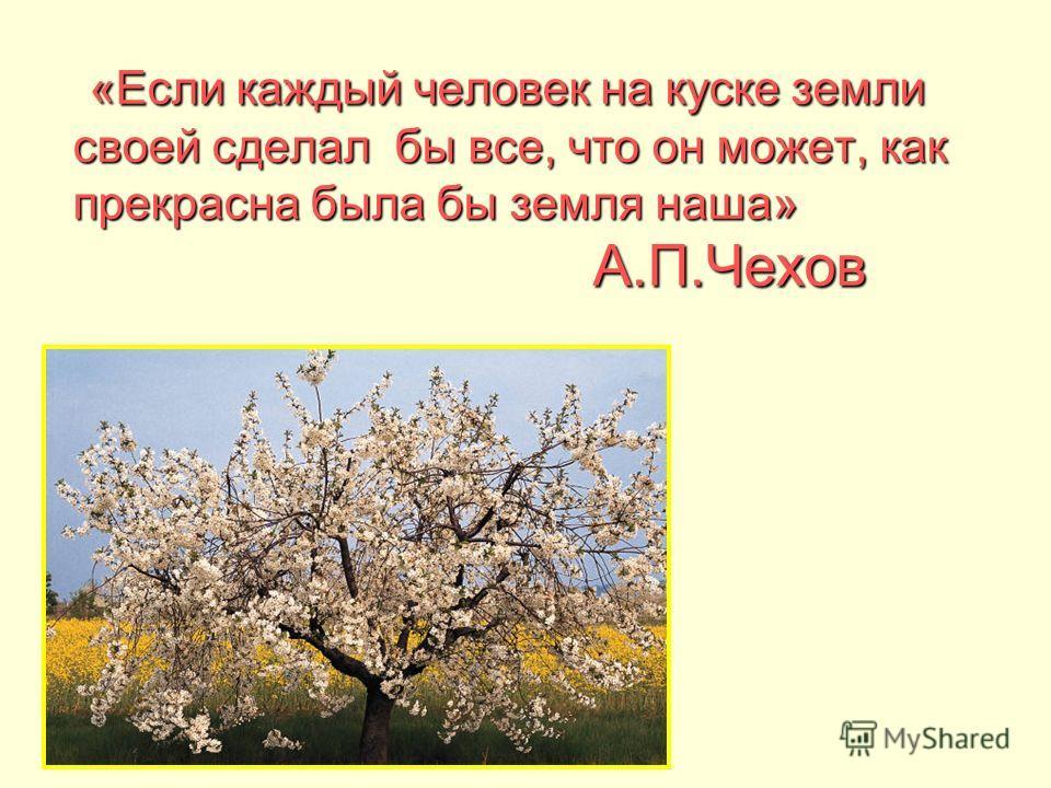 «Если каждый человек на куске земли своей сделал бы все, что он может, как прекрасна была бы земля наша» А.П.Чехов