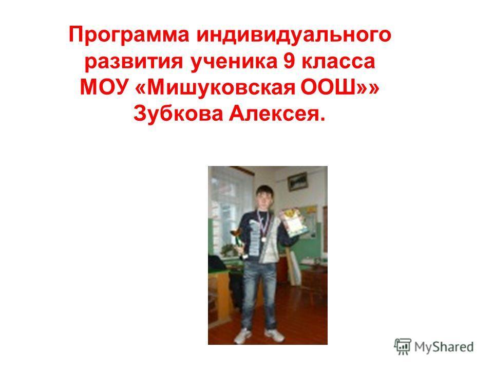 Программа индивидуального развития ученика 9 класса МОУ «Мишуковская ООШ»» Зубкова Алексея.