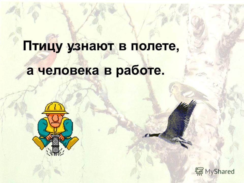 Птицу … Птицу узнают в полете, а человека в работе.