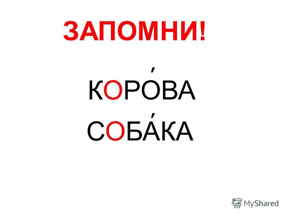 ЗАПОМНИ! КОРОВА СОБАКА ׳ ׳