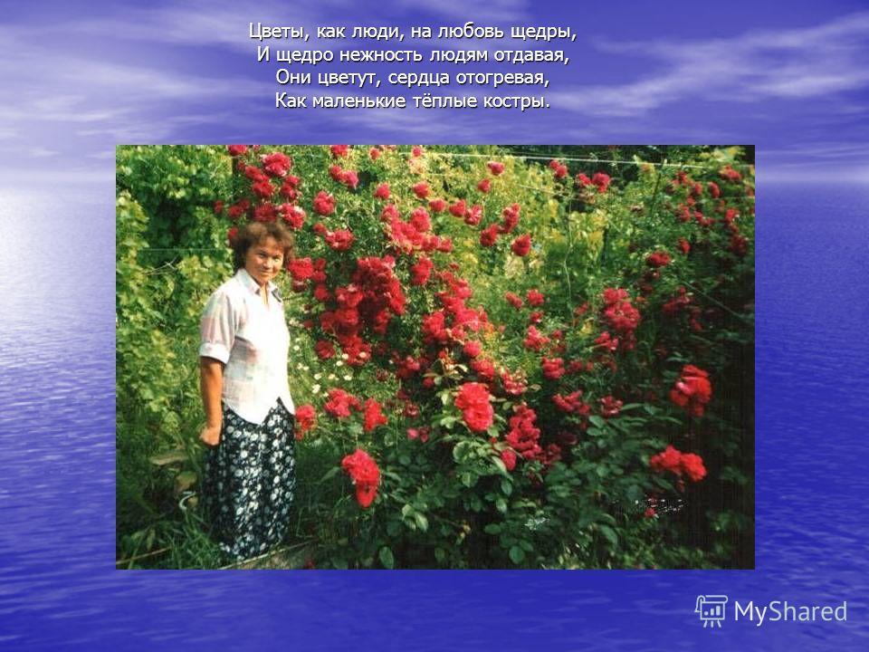 Цветы, как люди, на любовь щедры, И щедро нежность людям отдавая, Они цветут, сердца отогревая, Как маленькие тёплые костры.