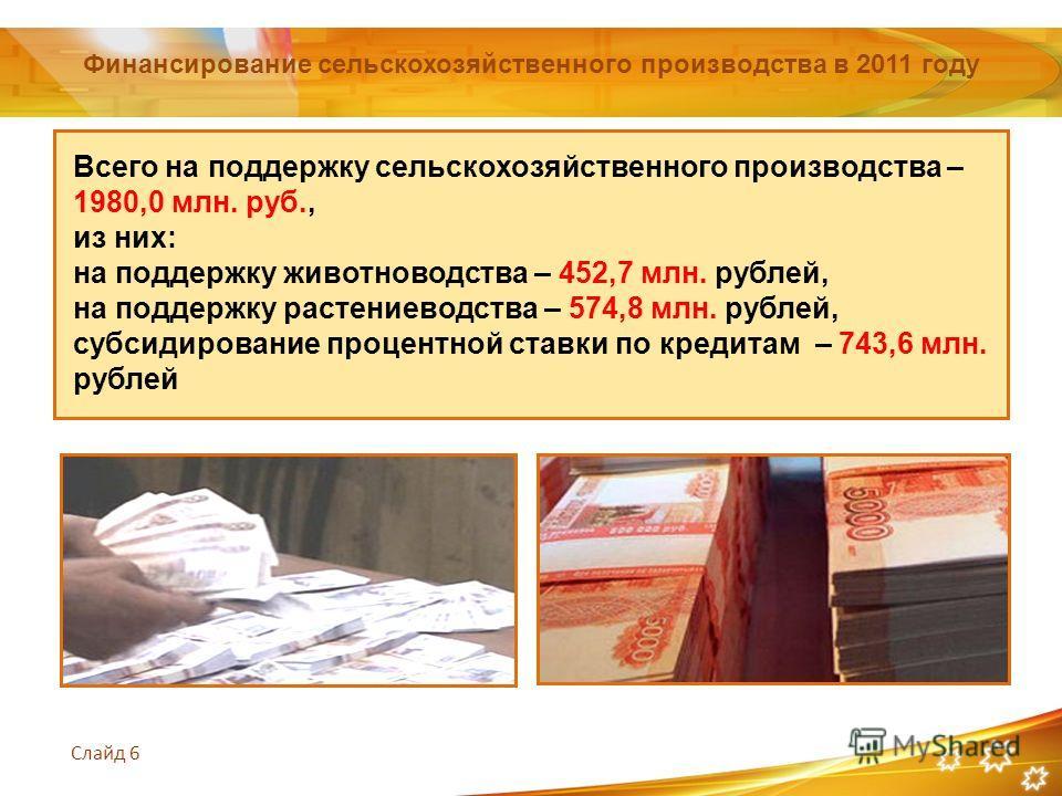 Слайд 6 Финансирование сельскохозяйственного производства в 2011 году Всего на поддержку сельскохозяйственного производства – 1980,0 млн. руб., из них: на поддержку животноводства – 452,7 млн. рублей, на поддержку растениеводства – 574,8 млн. рублей,