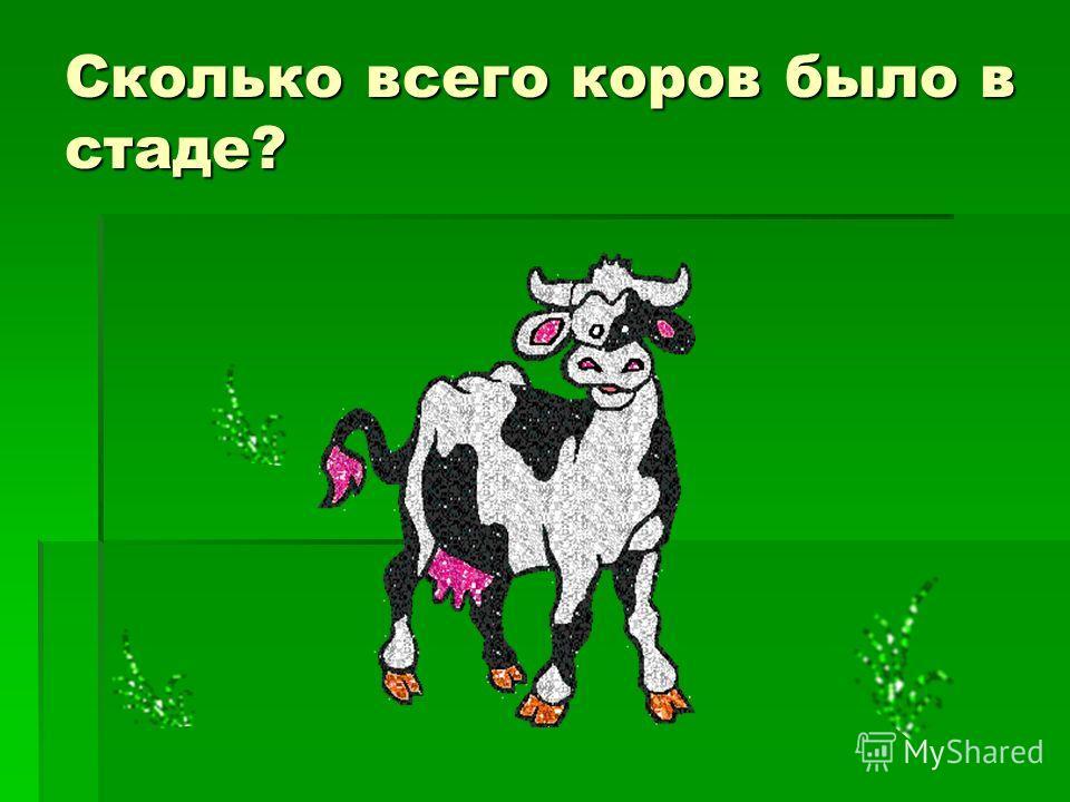 Сколько всего коров было в стаде?