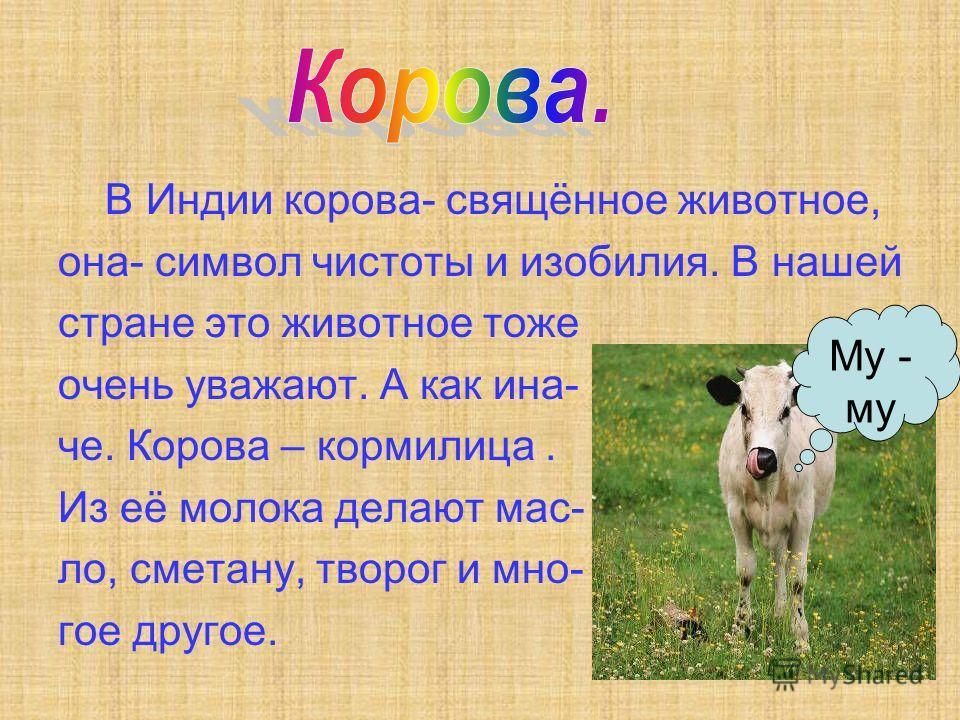 В Индии корова- свящённое животное, она- символ чистоты и изобилия. В нашей стране это животное тоже очень уважают. А как ина- че. Корова – кормилица. Из её молока делают мас- ло, сметану, творог и мно- гое другое. Му - му