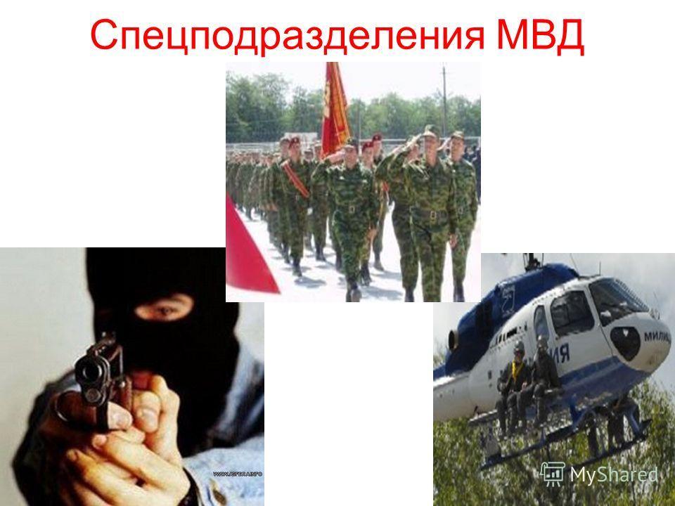 Спецподразделения МВД