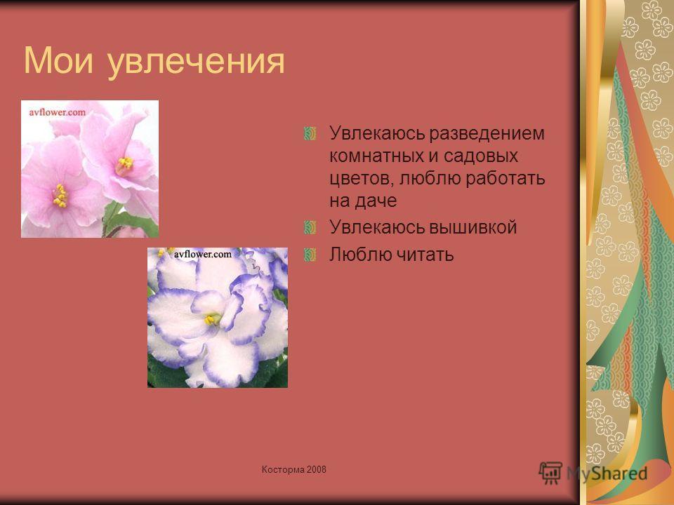 Мои увлечения Увлекаюсь разведением комнатных и садовых цветов, люблю работать на даче Увлекаюсь вышивкой Люблю читать Косторма 2008