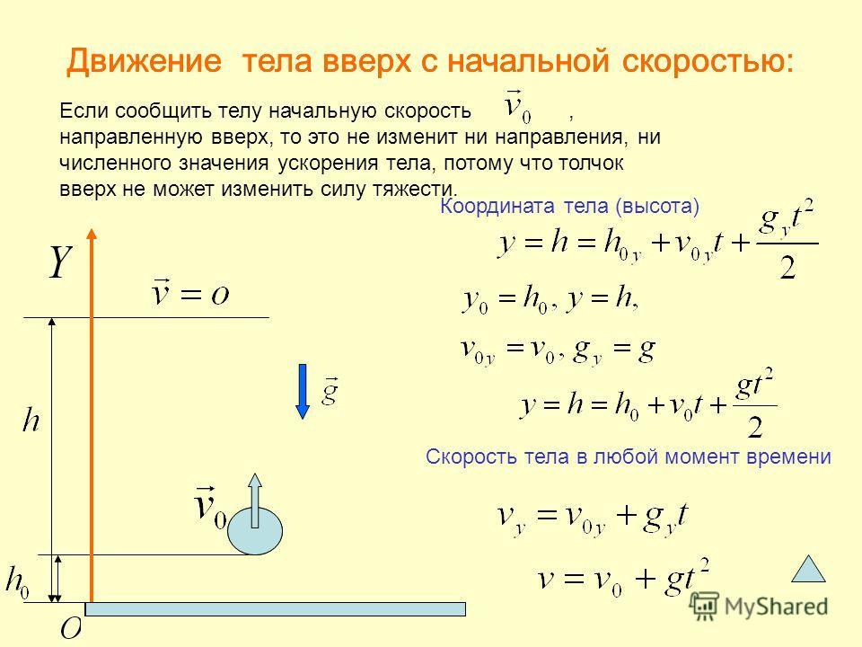 Если сообщить телу начальную скорость, направленную вверх, то это не изменит ни направления, ни численного значения ускорения тела, потому что толчок вверх не может изменить силу тяжести. Скорость тела в любой момент времени Координата тела (высота)