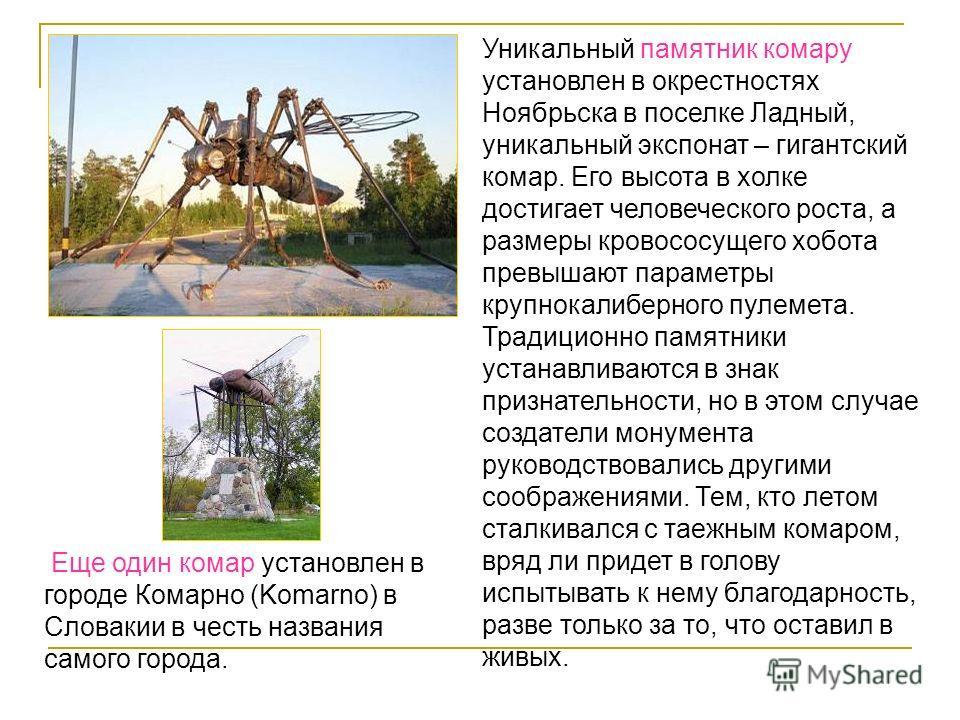 Уникальный памятник комару установлен в окрестностях Ноябрьска в поселке Ладный, уникальный экспонат – гигантский комар. Его высота в холке достигает человеческого роста, а размеры кровососущего хобота превышают параметры крупнокалиберного пулемета.