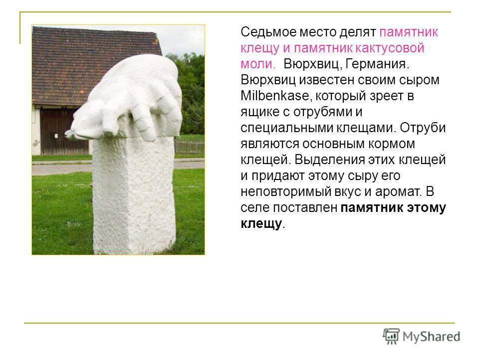 Седьмое место делят памятник клещу и памятник кактусовой моли. Вюрхвиц, Германия. Вюрхвиц известен своим сыром Milbenkase, который зреет в ящике с отрубями и специальными клещами. Отруби являются основным кормом клещей. Выделения этих клещей и придаю