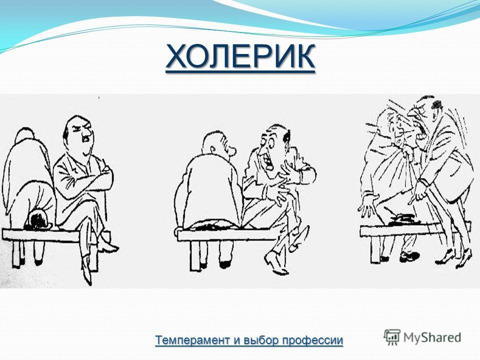 ХОЛЕРИК Темперамент и выбор профессии