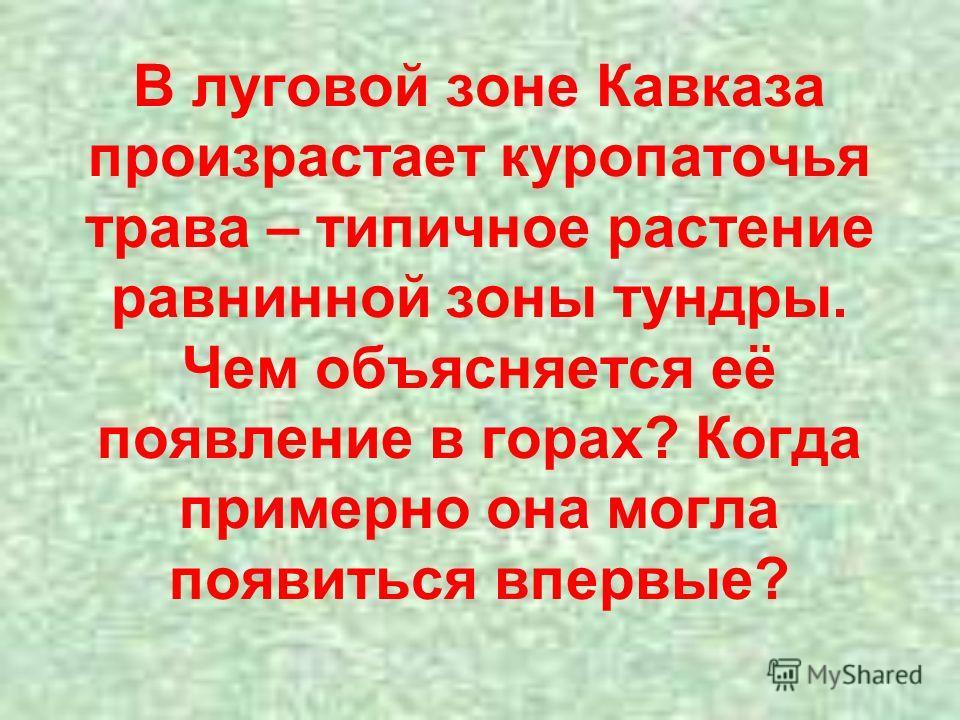 В луговой зоне Кавказа произрастает куропаточья трава – типичное растение равнинной зоны тундры. Чем объясняется её появление в горах? Когда примерно она могла появиться впервые?
