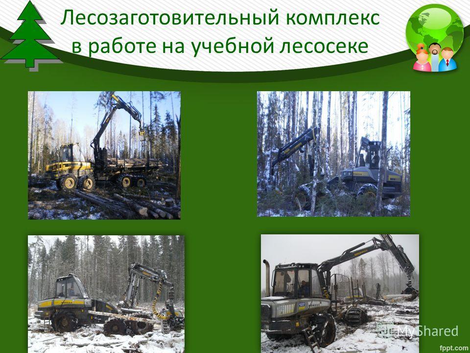 Лесозаготовительный комплекс в работе на учебной лесосеке