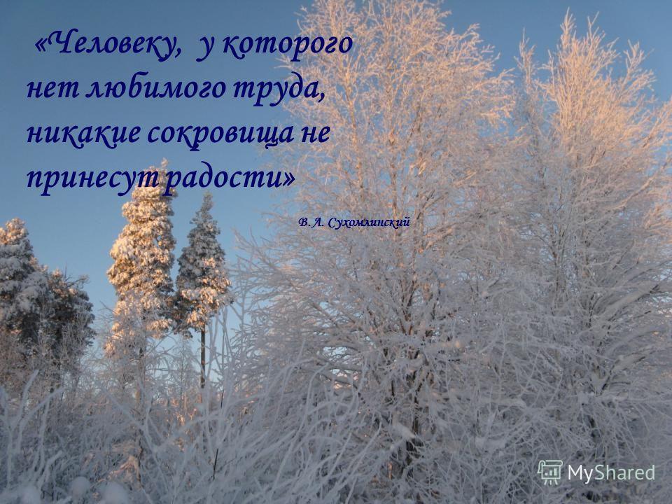 «Человеку, у которого нет любимого труда, никакие сокровища не принесут радости» В.А. Сухомлинский