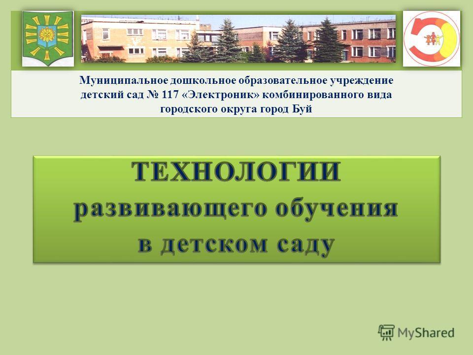 Муниципальное дошкольное образовательное учреждение детский сад 117 «Электроник» комбинированного вида городского округа город Буй