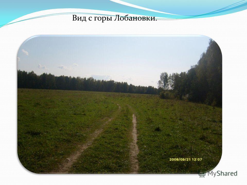Вид с горы Лобановки.