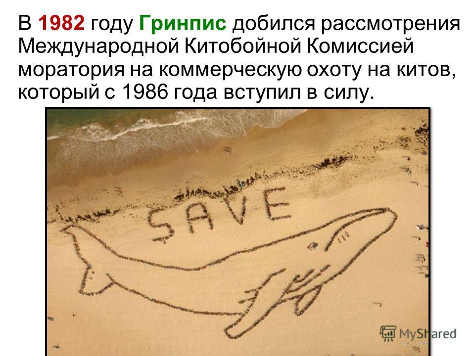 В 1982 году Гринпис добился рассмотрения Международной Китобойной Комиссией моратория на коммерческую охоту на китов, который с 1986 года вступил в силу.