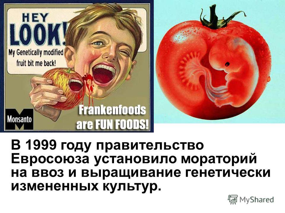 В 1999 году правительство Евросоюза установило мораторий на ввоз и выращивание генетически измененных культур.
