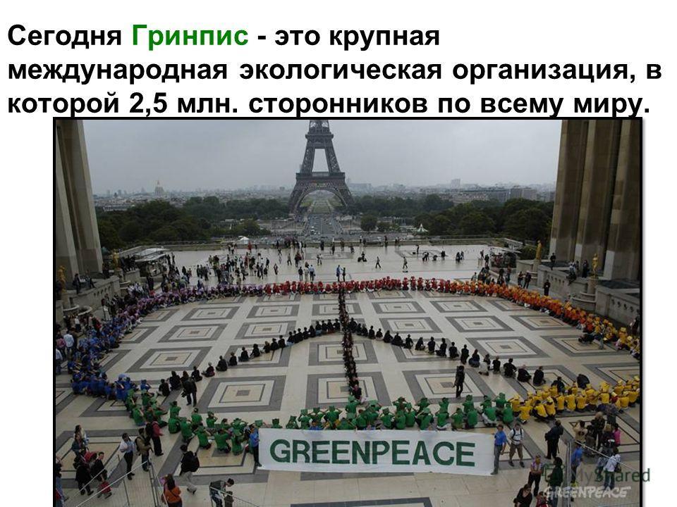 Сегодня Гринпис - это крупная международная экологическая организация, в которой 2,5 млн. сторонников по всему миру.