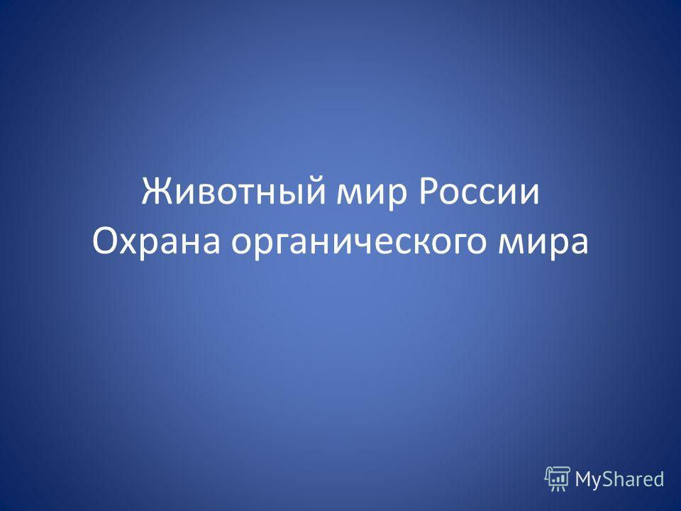 Животный мир России Охрана органического мира