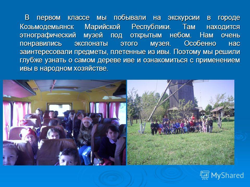 В первом классе мы побывали на экскурсии в городе Козьмодемьянск Марийской Республики. Там находится этнографический музей под открытым небом. Нам очень понравились экспонаты этого музея. Особенно нас заинтересовали предметы, плетенные из ивы. Поэтом