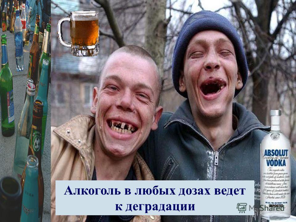 Алкоголь в любых дозах ведет к деградации