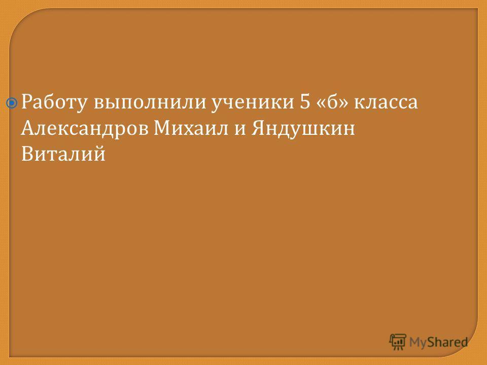 Работу выполнили ученики 5 « б » класса Александров Михаил и Яндушкин Виталий