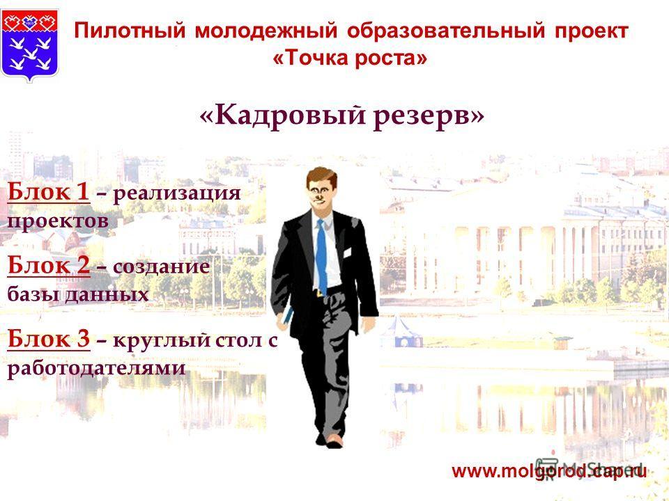 Пилотный молодежный образовательный проект «Точка роста» www.molgorod.cap.ru «Кадровый резерв» Блок 1 – реализация проектов Блок 2 – создание базы данных Блок 3 – круглый стол с работодателями