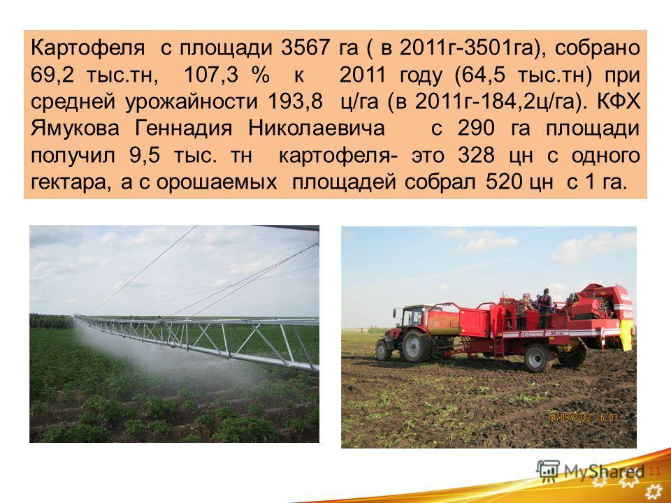 Картофеля с площади 3567 га ( в 2011г-3501га), собрано 69,2 тыс.тн, 107,3 % к 2011 году (64,5 тыс.тн) при средней урожайности 193,8 ц/га (в 2011г-184,2ц/га). КФХ Ямукова Геннадия Николаевича с 290 га площади получил 9,5 тыс. тн картофеля- это 328 цн