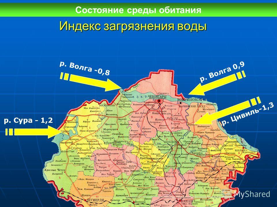 Индекс загрязнения воды р. Сура - 1,2 р. Волга 0,9 р. Волга -0,8 р. Цивиль-1,3 Состояние среды обитания