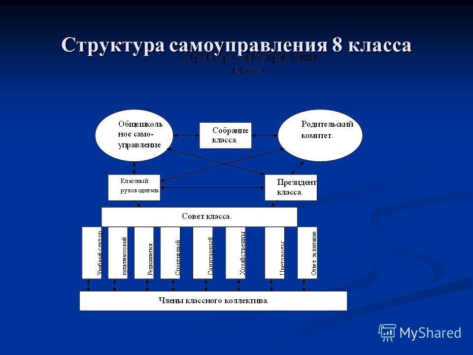 Структура самоуправления 8 класса