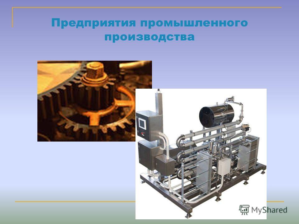 Предприятия промышленного производства